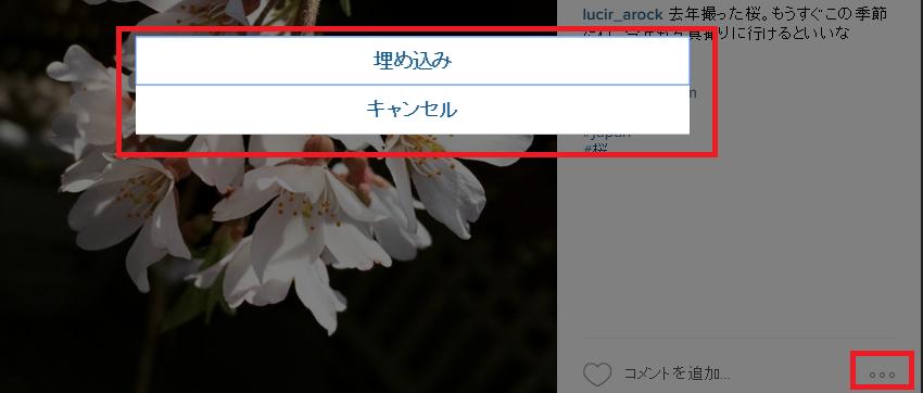 instagram埋め込み選択